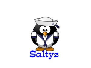 saltyz.com